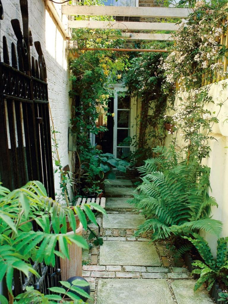Một lối nhỏ trồng dương xỉ sẽ mang đến vẻ cổ kính cho nhà bạn