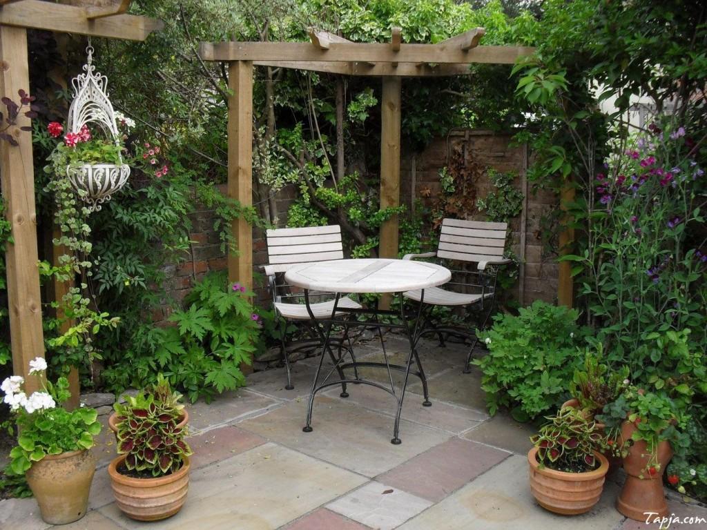 Sử dụng giàn gỗ và các cây dây leo là bạn đã có được một góc vườn đẹp