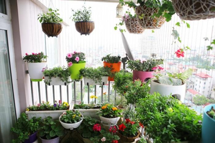 Sân vườn mini trên ban công cùng với các chậu cây treo