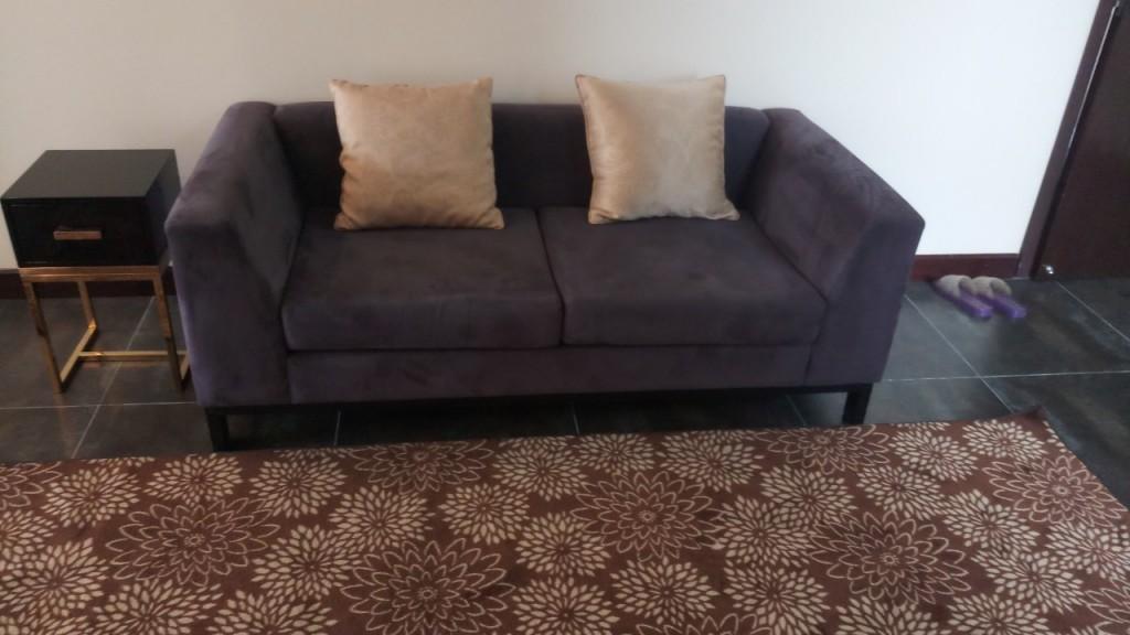 Chiếc ghế sofa đơn trở lên lởm nhởm vì bị rụng lông