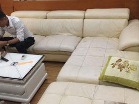 Bộ ghế sofa nhà anh Đức ở Xuân La đã bị trùng da rất xấu