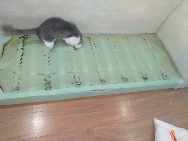 Mèo của khách hàng rất nghịch ngợm thường cào ghế