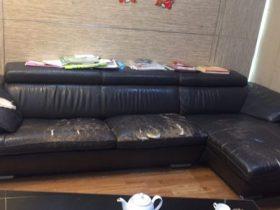 bộ sofa da cũ rách tại timecity của chị lan