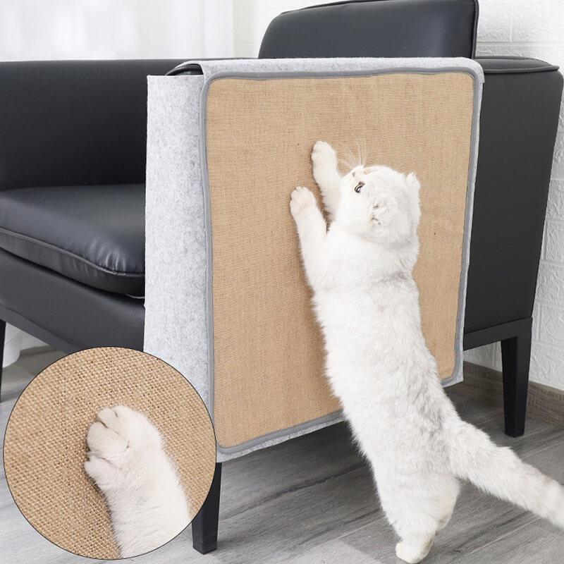 Mua trụ cào móng cho mèo